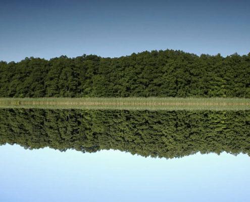 Landschafts und Natur Fotograf