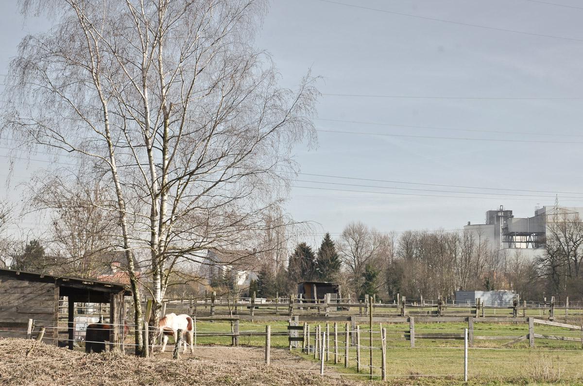 Landschaft nach sprängung des Kohlekraftwerks in Castrop-Rauxel / Dortmund im Ruhrgebiet